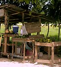 Dominican Vendor by Dan Perez