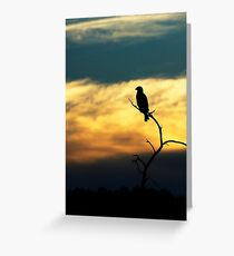 Silhoutte Greeting Card