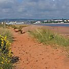 View of Exmouth by kernuak