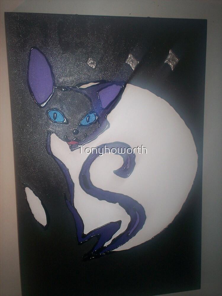 female cat by Tonyhoworth