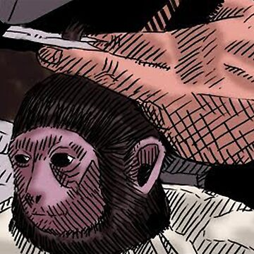 Monkey Haircut by Tedefred