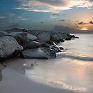The remains of the day by Sashy