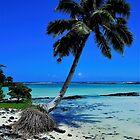 Serious Samoan Serenity  by Ran Richards