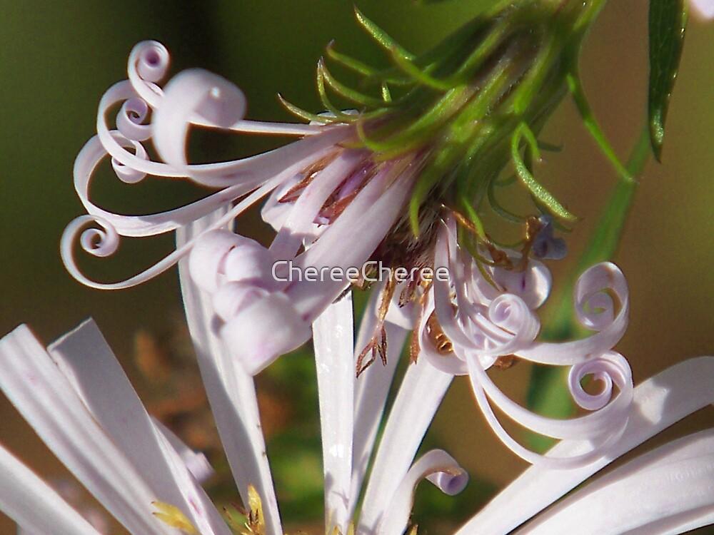 Flowering Curls by ChereeCheree