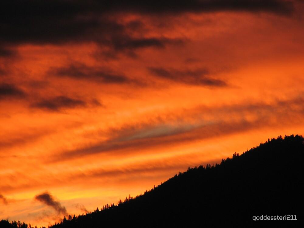 Orange blaze by goddessteri211