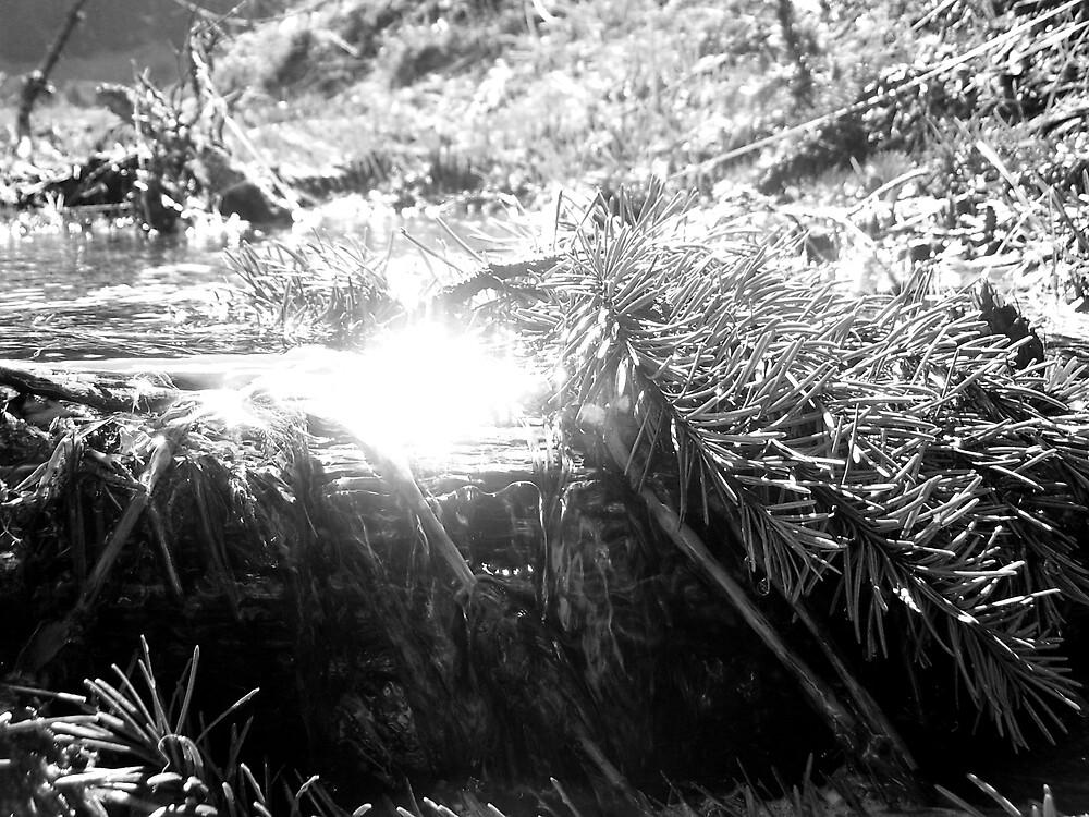 Mountain Stream by SongbirdBreid
