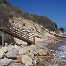 Steps to the Beach by Shaina Haynes