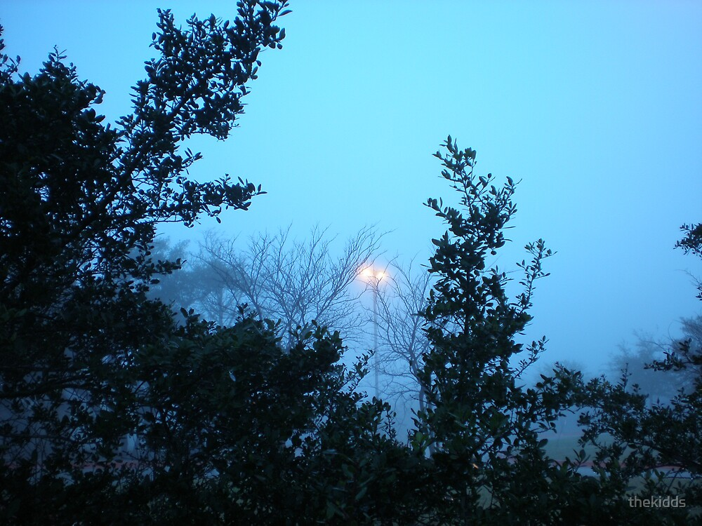 Foggy Morning by thekidds