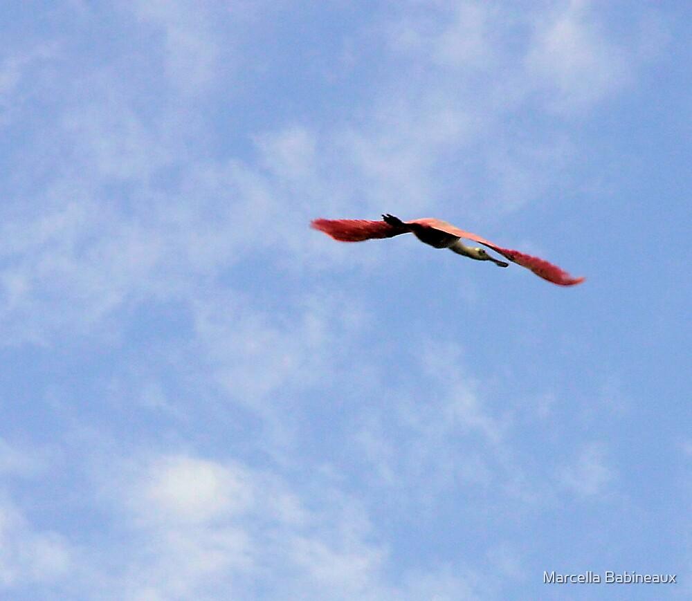 Roseate Egret Flying by Marcella Babineaux