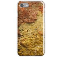 Limestone Abstract iPhone Case/Skin