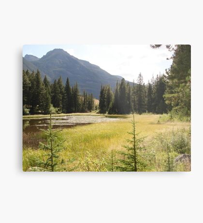 The Duckpond Metal Print
