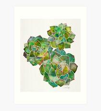 Rosette Succulents – Green Palette Art Print
