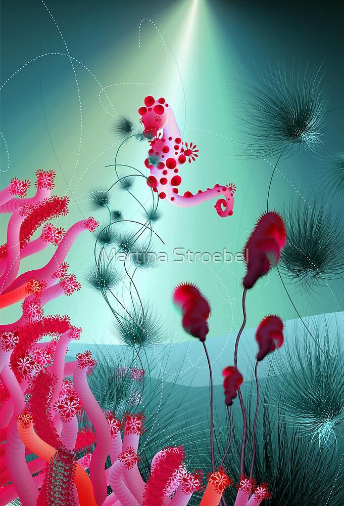 seahorse 1 by Martina Stroebel