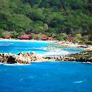Adrenaline Beach - Cezanne II by Shelley Neff