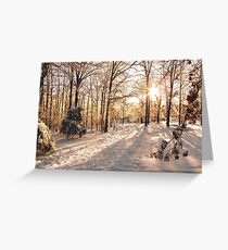 GOLDEN WINTER MORN 1 Greeting Card