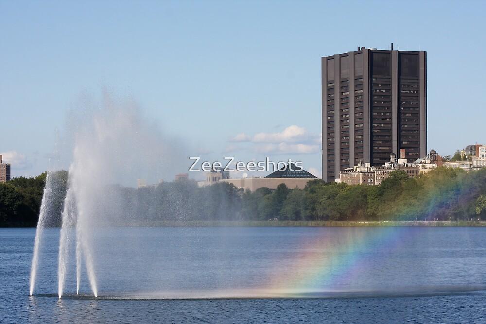 Rainbow by ZeeZeeshots