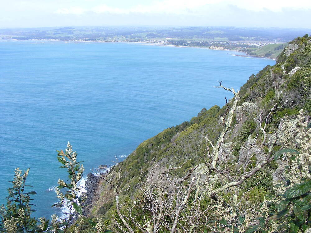 Wynyard from Table Cape lookout (Tasmania) by gaylene