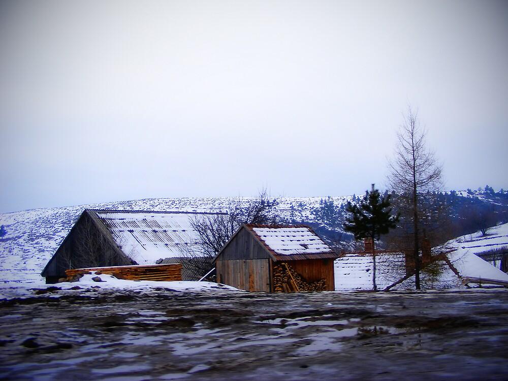 cold landscape by Rita Iszlai