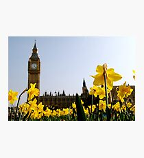Big Ben with Daffodils Photographic Print