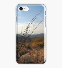 Sonoran Sundown iPhone Case/Skin