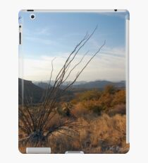 Sonoran Sundown iPad Case/Skin