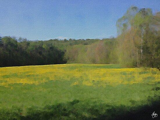 Dandelion Field by Wayne King