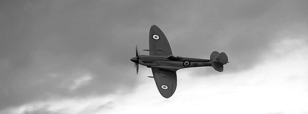 Spitfire by NrthLondonBoy
