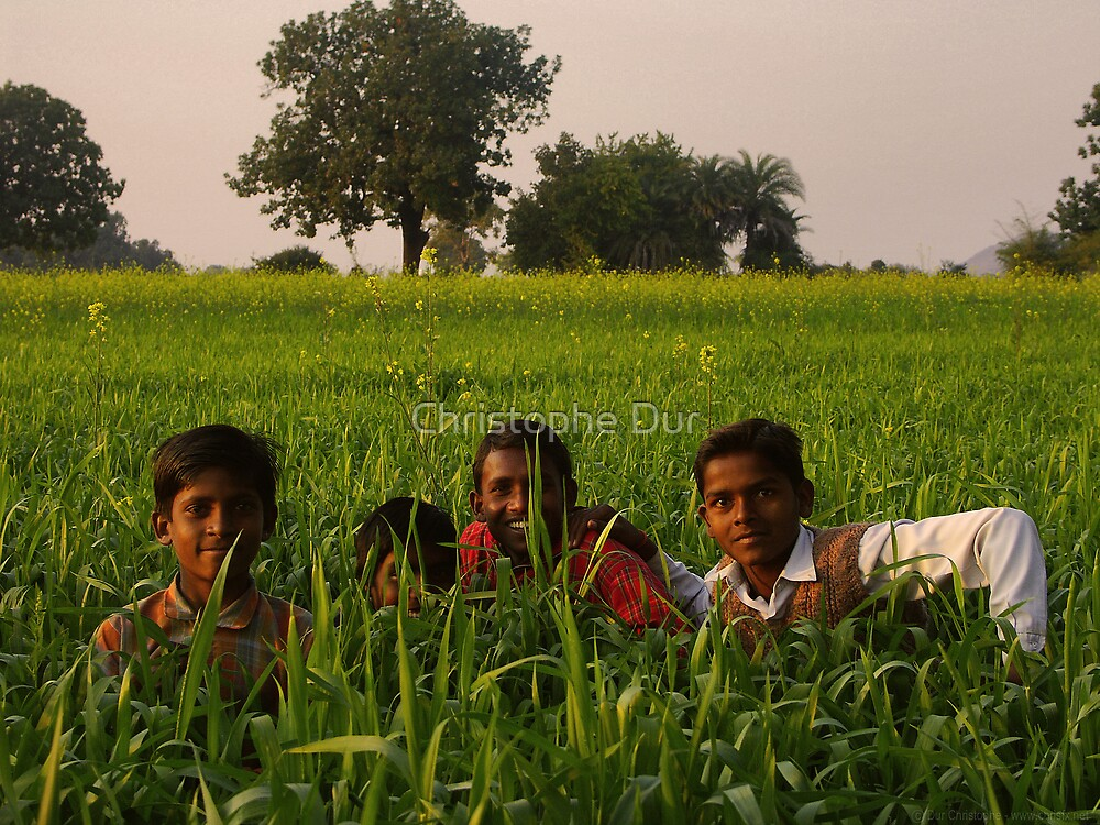 Boys in the grass - India by Christophe Dur