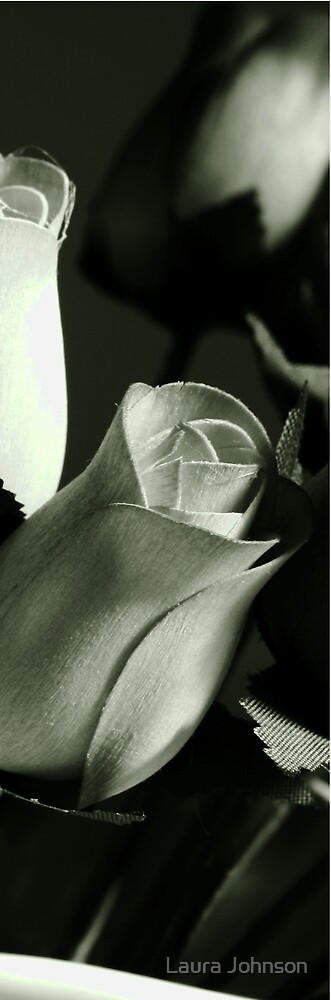 Wooden Roses #2 by Laura Johnson