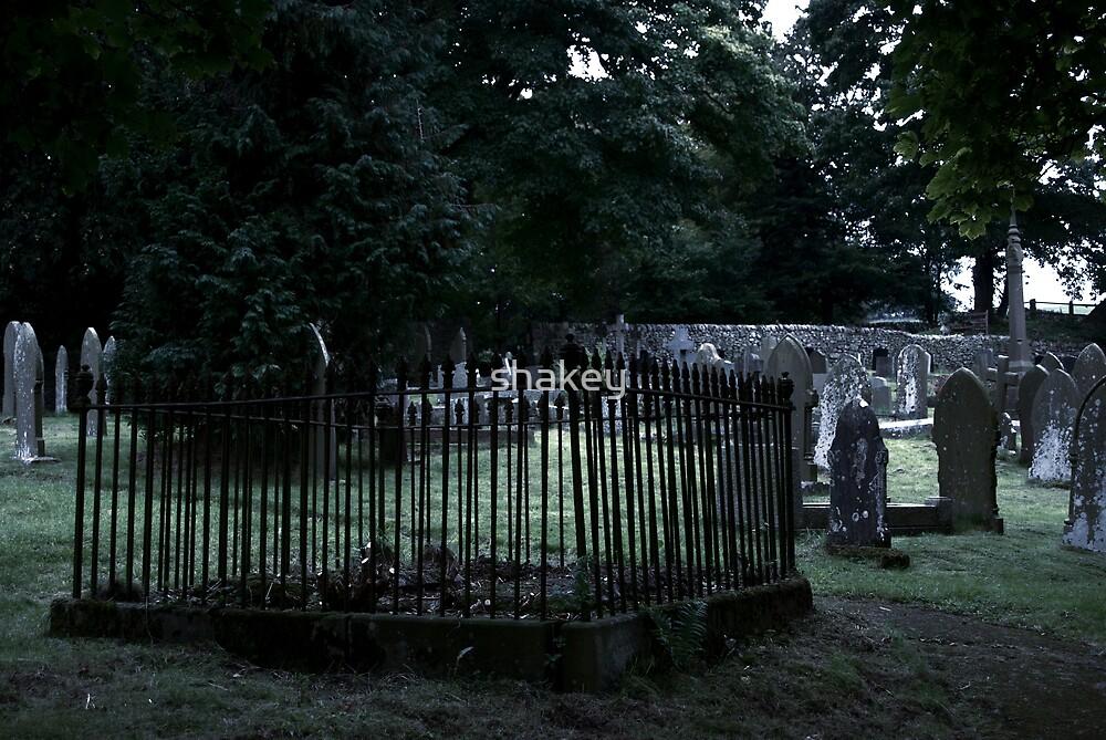 Graveyard dusk by shakey