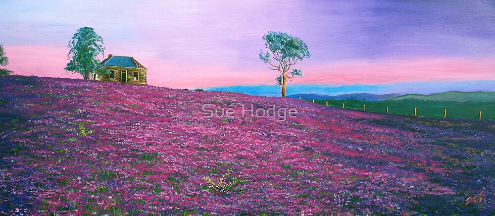 Purple by Sue Hodge