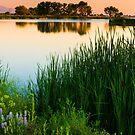 Sunrise In Colorado by John  De Bord Photography