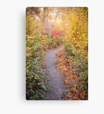 Autumn Leaves Lining Vaseux Lake Nature Trail Canvas Print