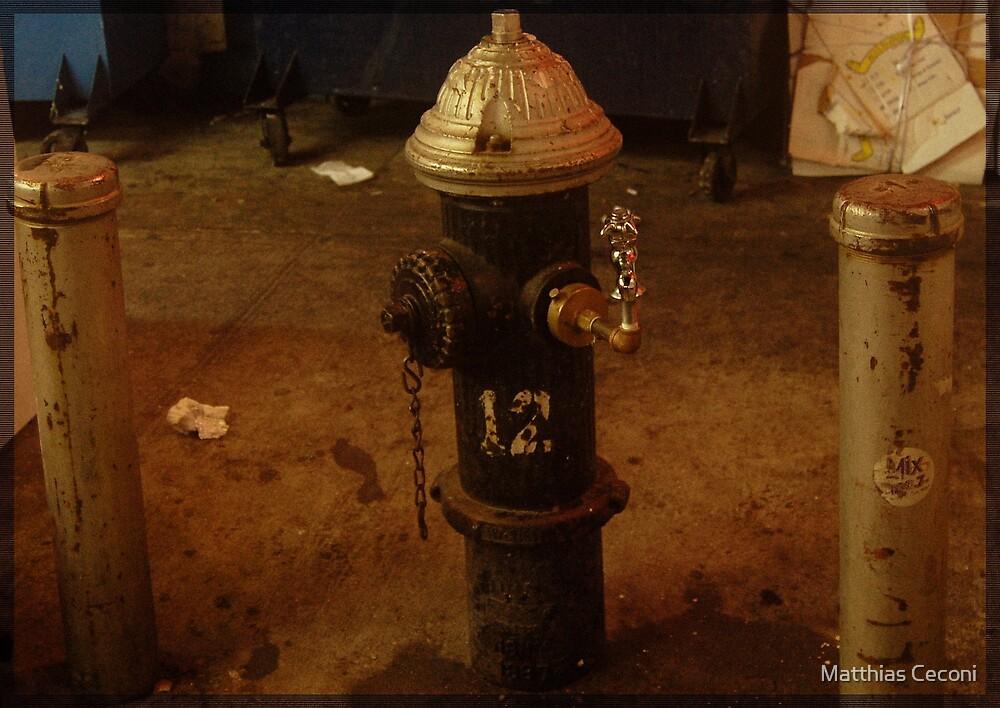 Hydrant by Matthias Ceconi
