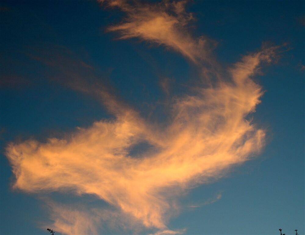 Cloudscape by Amanda Gazidis