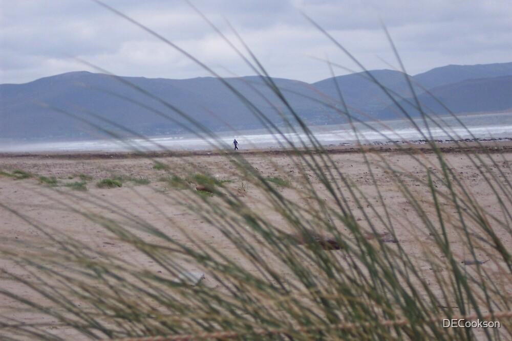 Inch Beach by DECookson