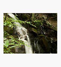 Guess what?  More Laurel Falls!! Photographic Print