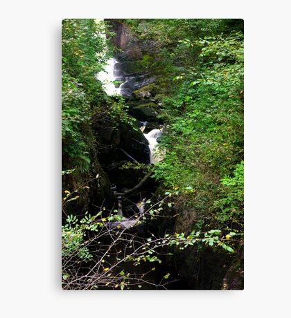 Pecca Falls #2 Canvas Print