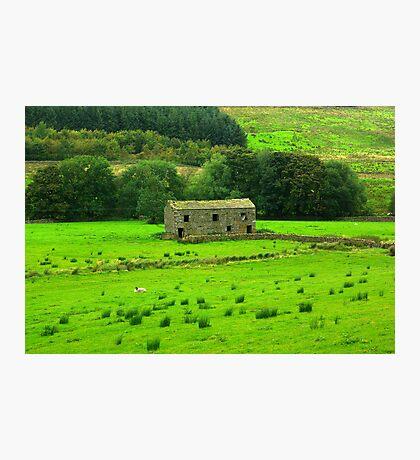 Dales Barns #2 Photographic Print