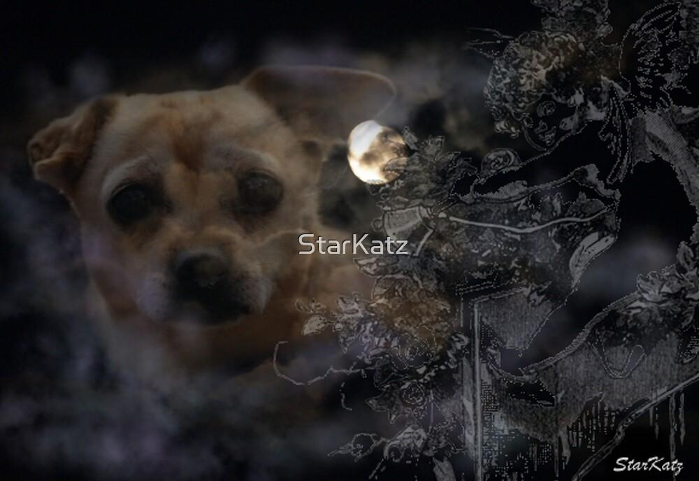 Sam by StarKatz