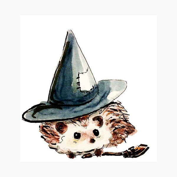 Hedgehog Witch Photographic Print