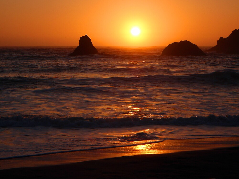 Sunset at Lone Ranch Beach, Oregon by Lorraine Foster