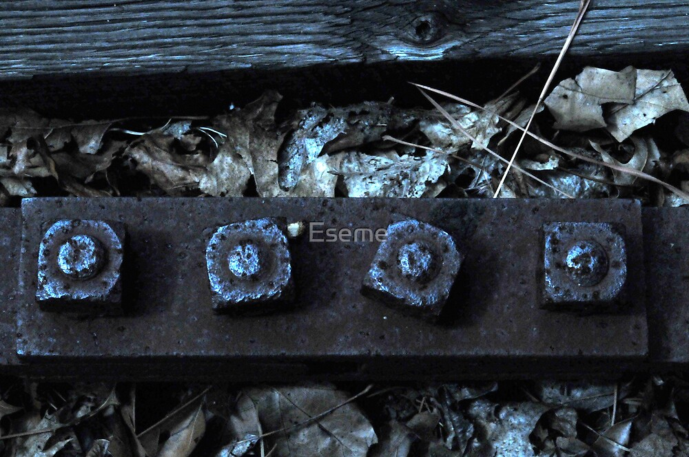 Nuts and Bolts by Eseme
