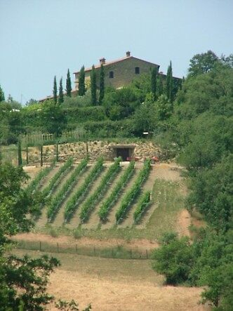 Italian hills by Charlotte Jarvis