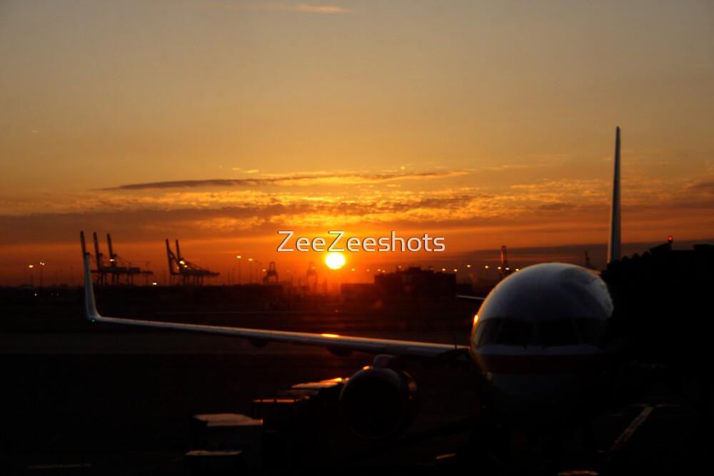 I am leaving on a jet plane by ZeeZeeshots