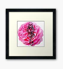 Carnations & Dark Marks Framed Print