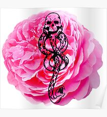 Carnations & Dark Marks Poster