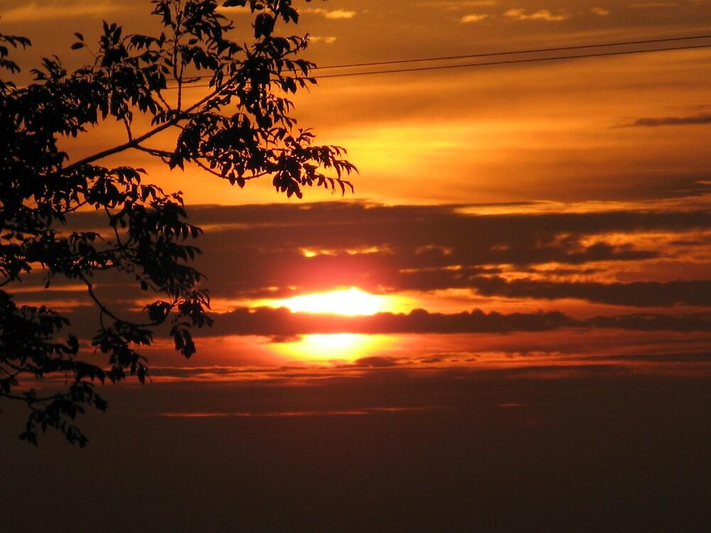 Sunset  by goldenginger