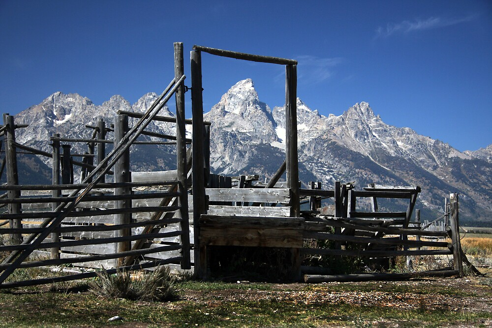 Great Teton Framed by noffi