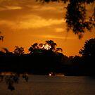 Sun Tree by paintin4him